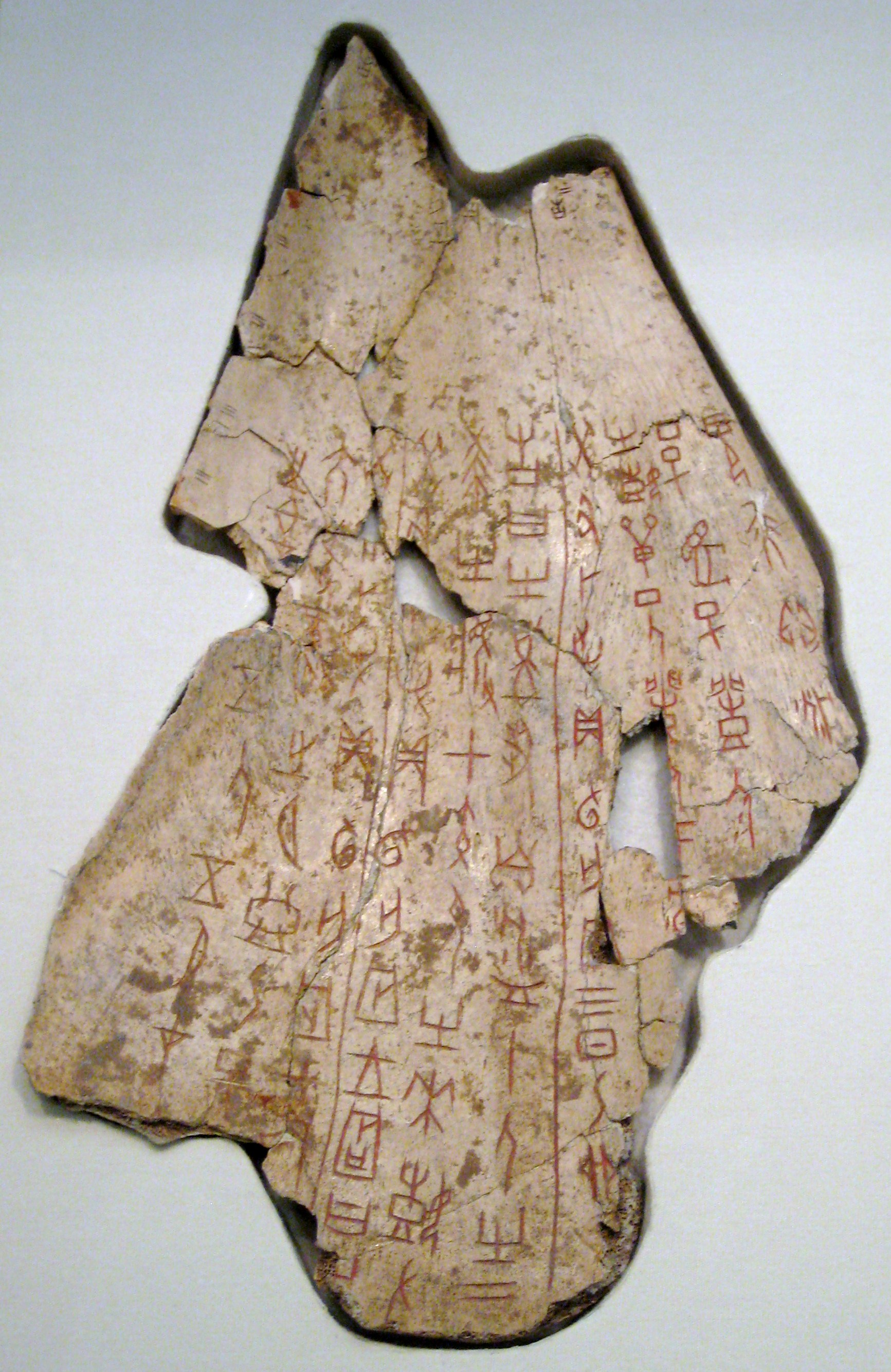 Shang_dynasty_inscribed_scapula